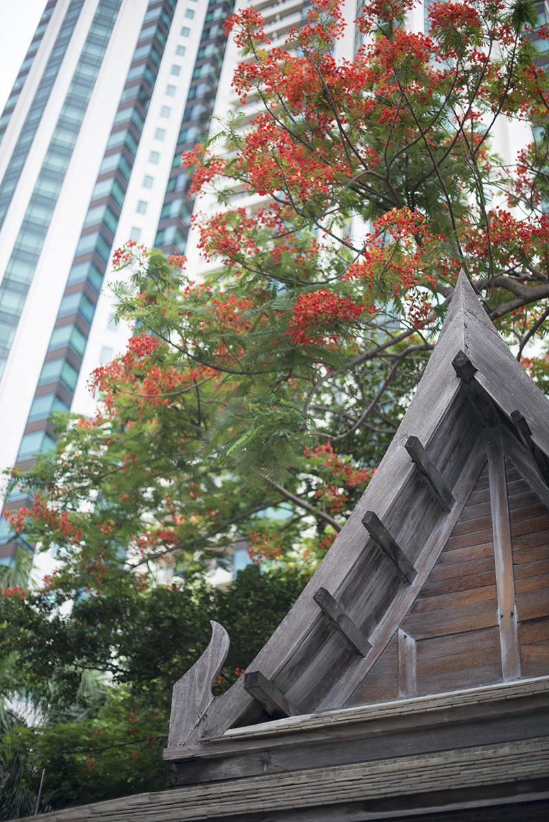 THAILAND_140624_0065Edit